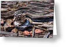 Rotted Railroad Tie Greeting Card