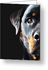Rottie Love - Rottweiler Art By Sharon Cummings Greeting Card