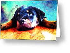 Rottie Puppy By Sharon Cummings Greeting Card