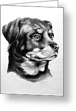 Rottweiler Devotion Greeting Card by Patricia Howitt