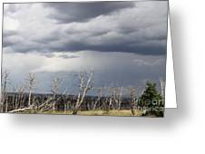 Rough Skys Over Colorado Plateau Greeting Card
