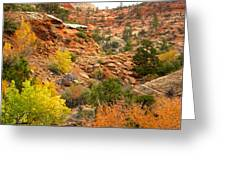 Rough Terrain In Autumn Along Zion-mount Carmel Highway In Zion Np-ut Greeting Card