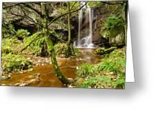 Roughting Linn Waterfall Greeting Card