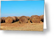 Round Bales Of Hay Greeting Card