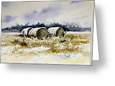 Round Bales Greeting Card