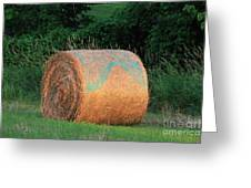 Round Hay Bale Greeting Card