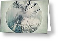 round treetops II Greeting Card by Priska Wettstein