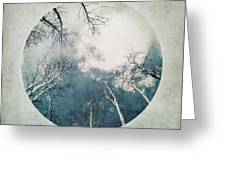 round treetops III Greeting Card