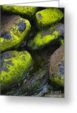 Rounded Rocks Greeting Card