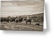 Rounding Up Cattle In Cornville Arizona Sepia Greeting Card