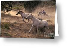 Rounding Up Horses On The Ranch Greeting Card