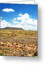 Route 66 Arizona Greeting Card