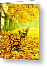 Row Of Red Benches In The Park Greeting Card