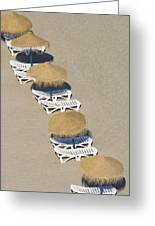 Rows Of Parasols On The Beach Of Greeting Card
