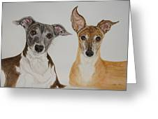 Roxie And Bruno The Greyhounds Greeting Card