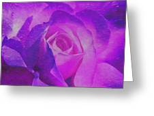 Royal Rose Greeting Card