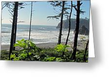 Ruby Beach I Greeting Card