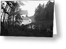 Ruby Beach In The Winter In Black And White Greeting Card