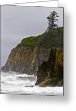 Ruby Beach Surf II Greeting Card