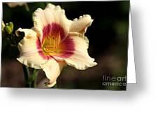 Ruby Peach Greeting Card