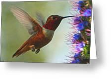 Ruby Throated Hummingbird Digital Art Greeting Card