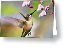 Ruby-throated Hummingbird - Digital Art Greeting Card