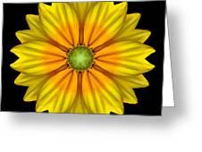 Rudbeckia Prairie Sun I Flower Mandala Greeting Card