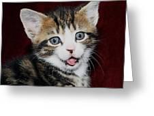 Rude Kitten Greeting Card