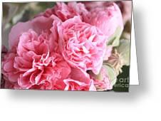 Ruffly Pink Hollyhock Greeting Card