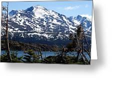 Rugged Alaska Greeting Card