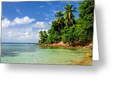 Rugged Lush Green Coastline Greeting Card