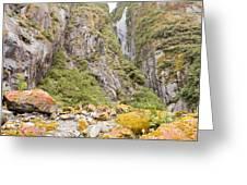Rugged Mountain Wilderness Vegetation Greeting Card