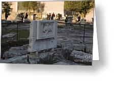 Ruins At The Roman Forum Greeting Card