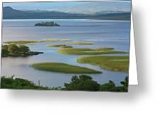 Ruins In Lough Corrib  Connemara Greeting Card