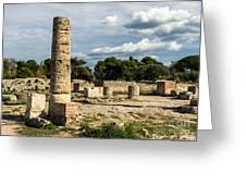 Ruins Of Paestum Greeting Card