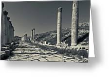 Ruins Of Roman-era Columns Greeting Card