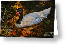 Ripples Of Beauty Greeting Card