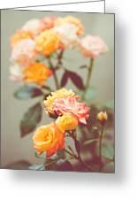 Rumba Rose Greeting Card