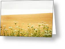 Run With Me Through A Field Of Wild Flowers Greeting Card by Artist and Photographer Laura Wrede