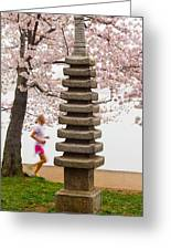 Running By The Tidal Basin Greeting Card