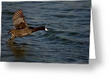 Running On Water Series 4 Greeting Card