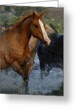 Running Wild Painting Greeting Card
