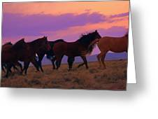 Running Wild Running Free  Greeting Card