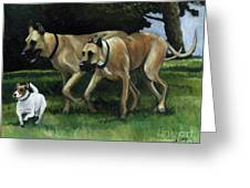 Running With The Big Boys Greeting Card