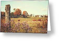 Rural Country Scene Greeting Card