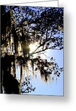 Rural Florida Sky Greeting Card