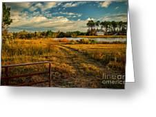 Rural Georgia  Greeting Card