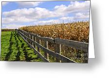 Rural Landscape With Fence Greeting Card