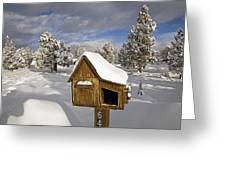 Rural Mailbox Greeting Card
