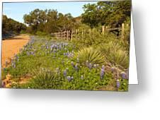 Rural Road 2am-110239 Greeting Card